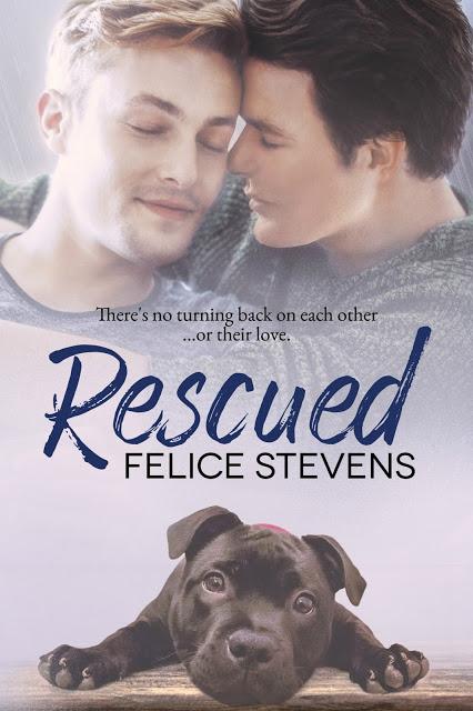 Rescued Ebook Cover.jpg